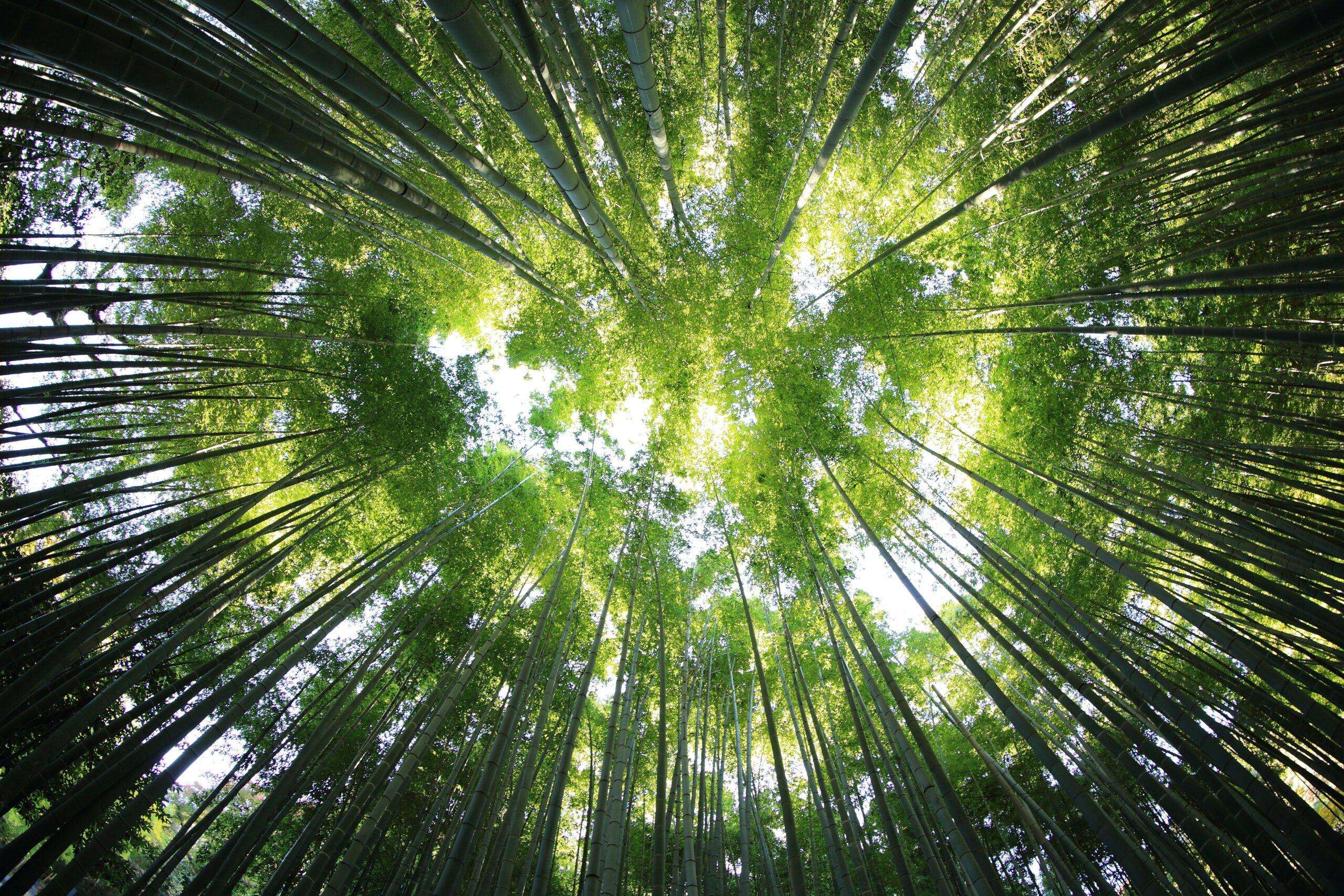 nachhaltig angetriebenen energiewelt